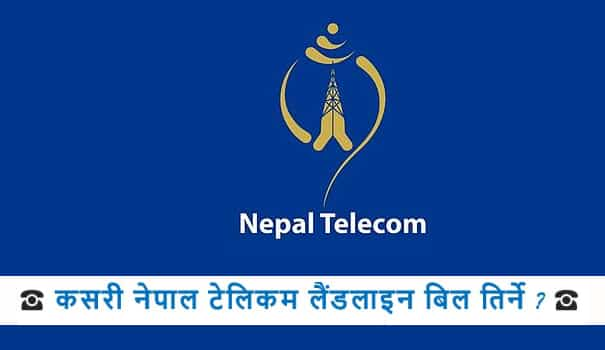 how-to-check-pay-nepal-telecom-landline-bill-sms-ivr-webrecharge